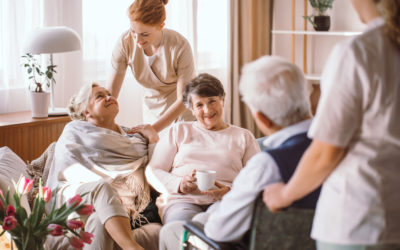 Hospice Care and Nursing Home Care: Navigating Your Options